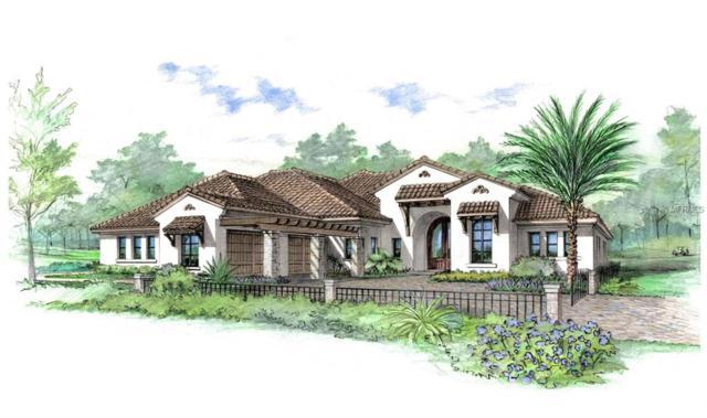 16904 Villalagos De Avila, Lutz, FL 33548 (MLS #T3127987) :: 54 Realty