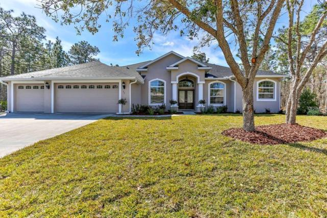 10 Cactus Street, Homosassa, FL 34446 (MLS #T3128061) :: Mark and Joni Coulter | Better Homes and Gardens