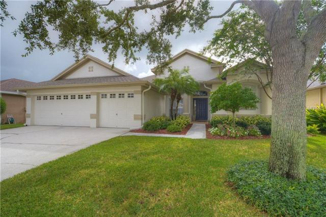 10403 Snowden Place, Tampa, FL 33626 (MLS #T3128078) :: The Duncan Duo Team