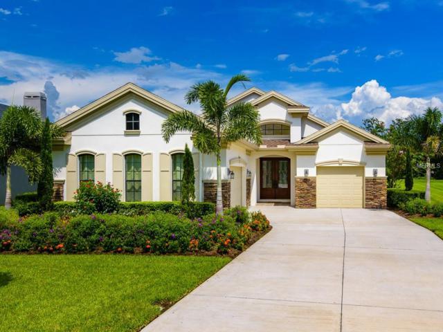 230 Lesley Lane, Oldsmar, FL 34677 (MLS #T3128422) :: O'Connor Homes