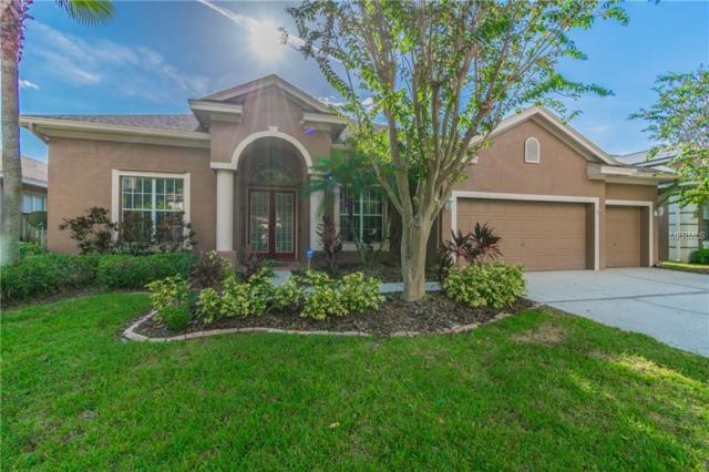 10758 Tavistock Drive, Tampa, FL 33626 (MLS #T3128451) :: The Duncan Duo Team