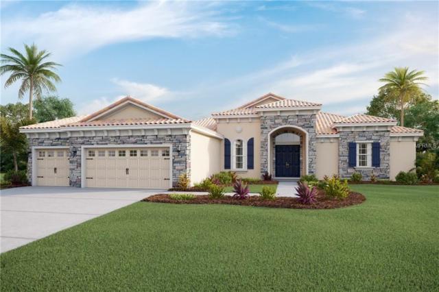16633 5TH Avenue E, Bradenton, FL 34212 (MLS #T3128558) :: Premium Properties Real Estate Services
