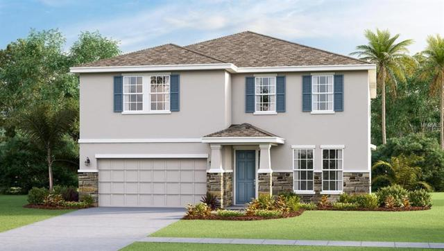 5024 Jackel Chase Drive, Wimauma, FL 33598 (MLS #T3128576) :: The Duncan Duo Team