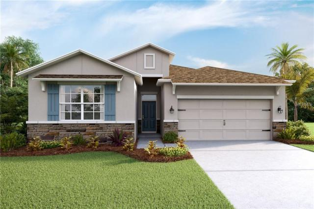 5026 Jackel Chase Drive, Wimauma, FL 33598 (MLS #T3128586) :: The Duncan Duo Team