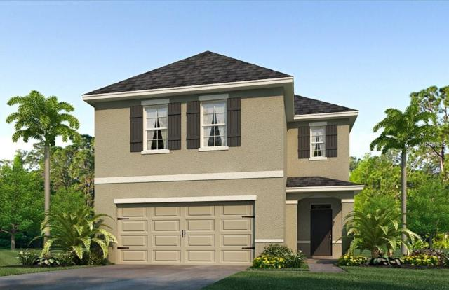 16842 Trite Bend Street, Wimauma, FL 33598 (MLS #T3128603) :: The Duncan Duo Team