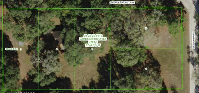 30312 Orange Grove Lane Lot 9, Wesley Chapel, FL 33545 (MLS #T3128608) :: The Duncan Duo Team
