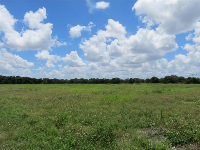 Albritton Rd, Parrish, FL 34219 (MLS #T3128718) :: Griffin Group