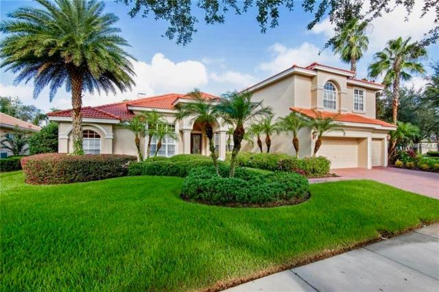 17206 Lakay Place, Tampa, FL 33647 (MLS #T3128777) :: The Duncan Duo Team