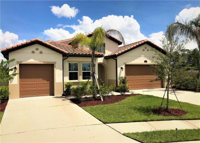 18103 Leafmore Street, Lutz, FL 33548 (MLS #T3128834) :: Delgado Home Team at Keller Williams