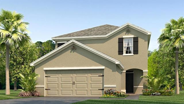 907 Ashentree Drive, Plant City, FL 33563 (MLS #T3128856) :: The Duncan Duo Team