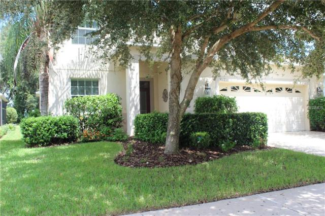 Address Not Published, Tampa, FL 33647 (MLS #T3128890) :: The Duncan Duo Team