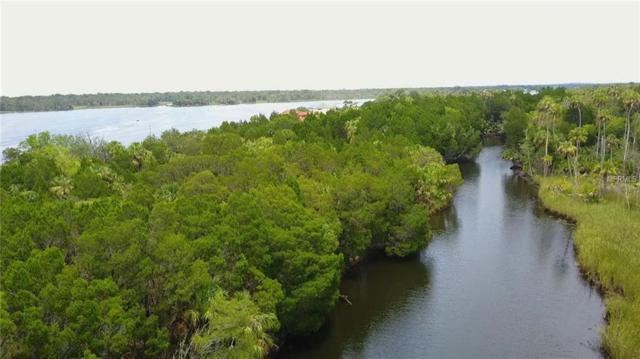 2876 N Regatta Point, Crystal River, FL 34429 (MLS #T3128909) :: Griffin Group