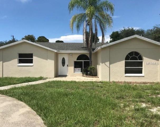 16801 Bachmann Avenue, Hudson, FL 34667 (MLS #T3128975) :: The Lockhart Team