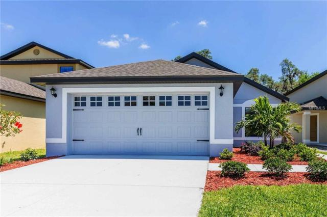 2242 Caspian Drive, Lakeland, FL 33805 (MLS #T3129099) :: The Light Team