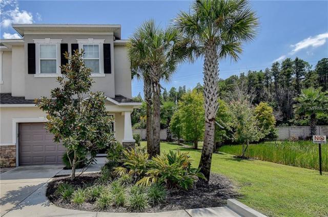 608 Cabernet Way, Oldsmar, FL 34677 (MLS #T3129122) :: Cartwright Realty