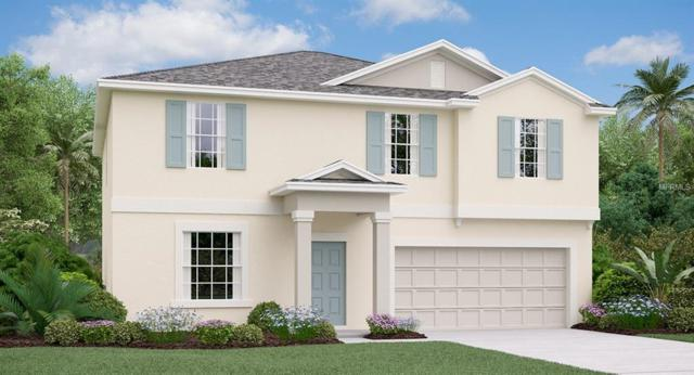 10252 Strawberry Tetra Drive, Riverview, FL 33578 (MLS #T3129238) :: The Duncan Duo Team