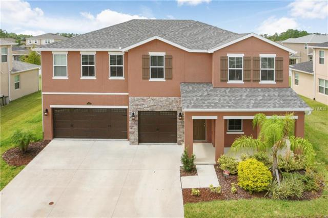 5427 Suncatcher Drive, Wesley Chapel, FL 33545 (MLS #T3129371) :: The Duncan Duo Team