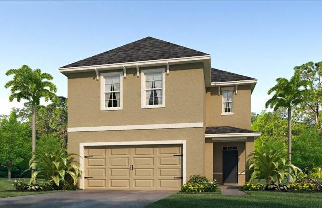 16846 Trite Bend Street, Wimauma, FL 33598 (MLS #T3129407) :: The Duncan Duo Team