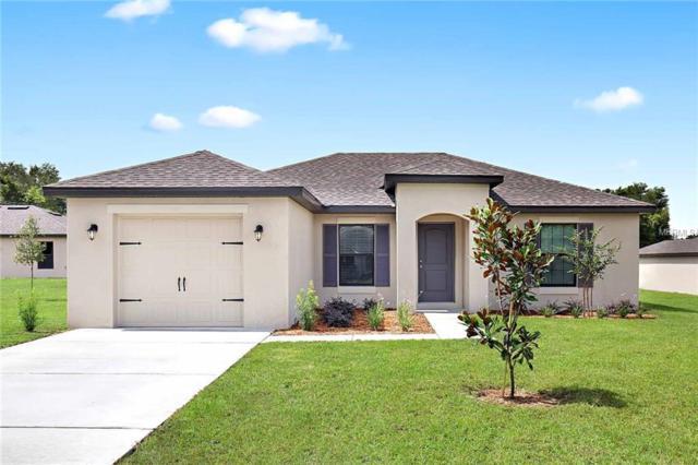 6362 Enterprise Drive, Brooksville, FL 34602 (MLS #T3129475) :: Team Pepka