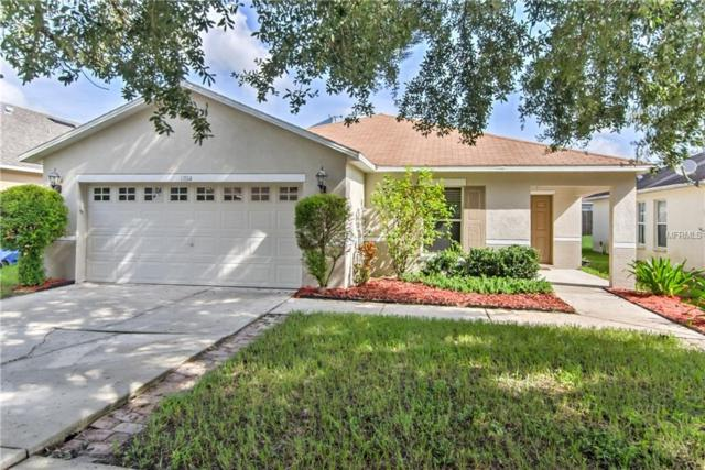 13514 Blue Sunfish Court, Riverview, FL 33569 (MLS #T3129486) :: The Duncan Duo Team