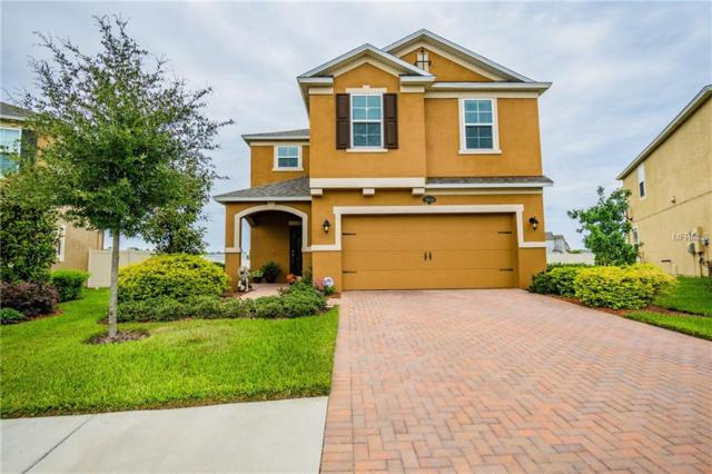 1848 Oak Hammock Court, Lutz, FL 33558 (MLS #T3129654) :: The Duncan Duo Team