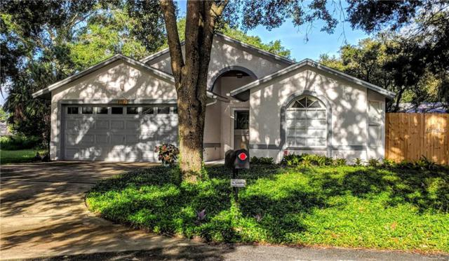 3733 Saint Augustine Place, Land O Lakes, FL 34639 (MLS #T3129682) :: Cartwright Realty