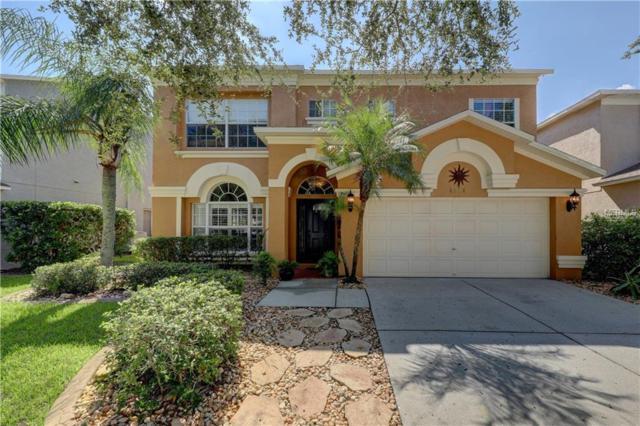 4204 Harbor Lake Drive, Lutz, FL 33558 (MLS #T3129687) :: Cartwright Realty