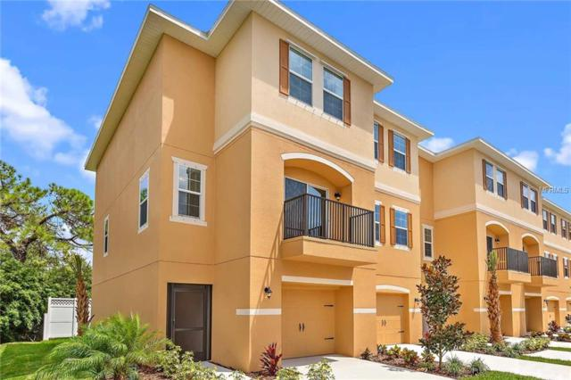 5520 White Marlin Court, New Port Richey, FL 34652 (MLS #T3129840) :: The Duncan Duo Team