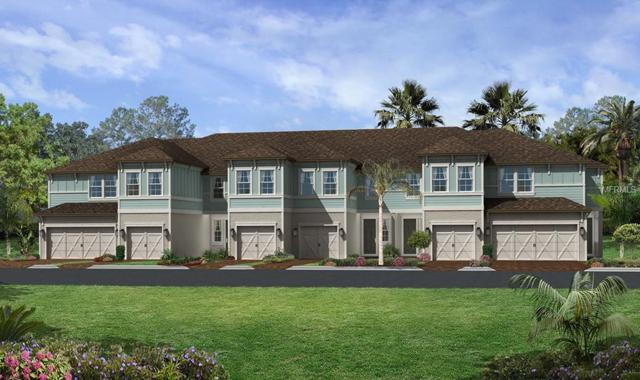 2485 Golden Pasture Circle #134, Largo, FL 33774 (MLS #T3129891) :: Burwell Real Estate