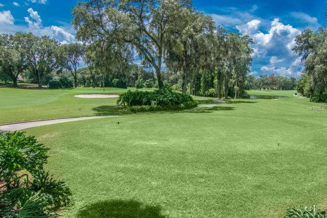 16908 Villalagos De Avila, Lutz, FL 33548 (MLS #T3129929) :: Rabell Realty Group