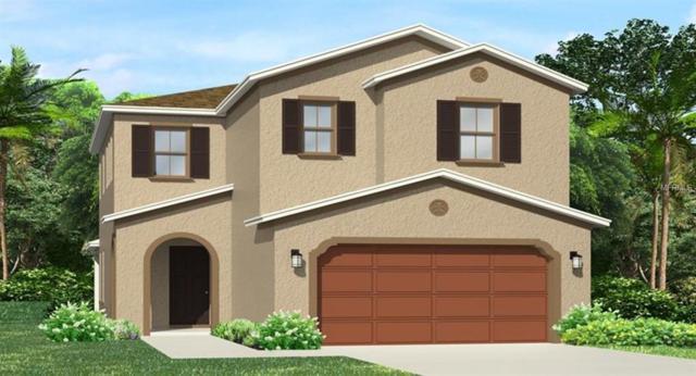 4765 Tramanto Lane, Wesley Chapel, FL 33543 (MLS #T3129947) :: Team Bohannon Keller Williams, Tampa Properties