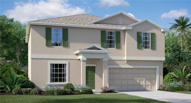 10001 Rose Petal Place, Riverview, FL 33578 (MLS #T3129980) :: The Duncan Duo Team