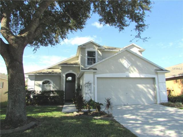 3901 Judson Drive, Land O Lakes, FL 34638 (MLS #T3130078) :: Revolution Real Estate