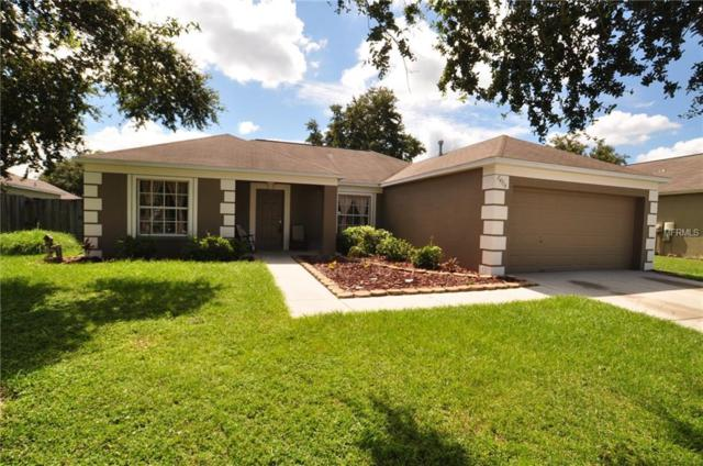 24316 Branchwood Court, Lutz, FL 33559 (MLS #T3130092) :: The Duncan Duo Team