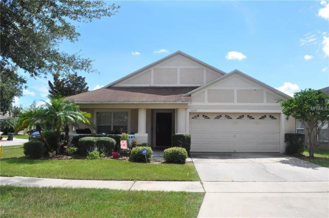 11121 Rodeo Lane, Riverview, FL 33579 (MLS #T3130374) :: The Duncan Duo Team