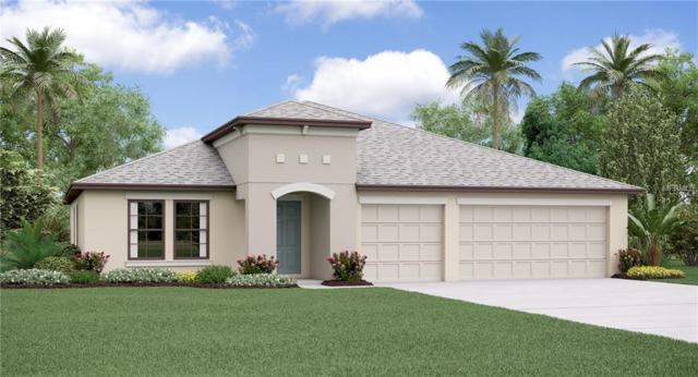 14015 Arbor Pines Drive, Riverview, FL 33579 (MLS #T3130428) :: The Light Team