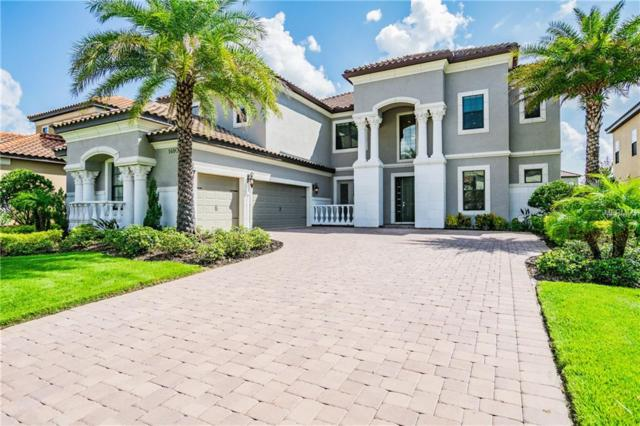 14809 Harry Colt Court, Tampa, FL 33626 (MLS #T3130469) :: SANDROC Group