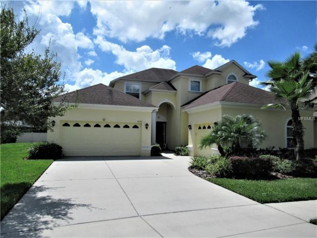 3529 Diamond Falls Circle, Land O Lakes, FL 34638 (MLS #T3130483) :: Premium Properties Real Estate Services