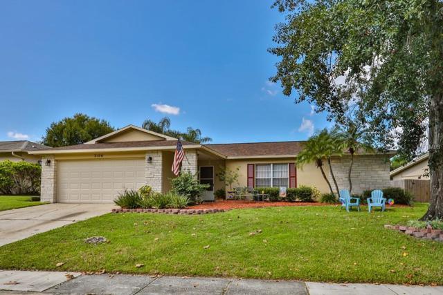 3106 Swan Lane, Safety Harbor, FL 34695 (MLS #T3130606) :: Beach Island Group