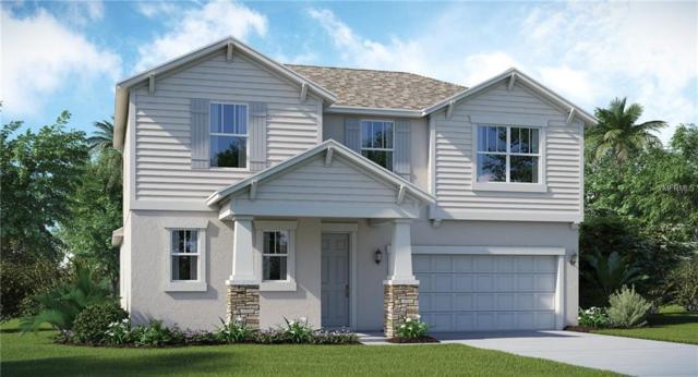 13616 Ashlar Slate Place, Riverview, FL 33579 (MLS #T3130608) :: The Duncan Duo Team