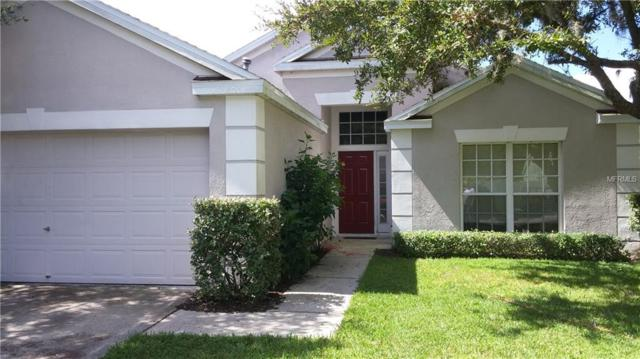 29942 Morningmist Drive, Wesley Chapel, FL 33543 (MLS #T3130614) :: The Duncan Duo Team