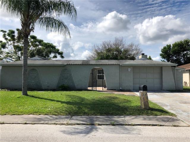 6234 Seabreeze Drive, Port Richey, FL 34668 (MLS #T3130637) :: Griffin Group