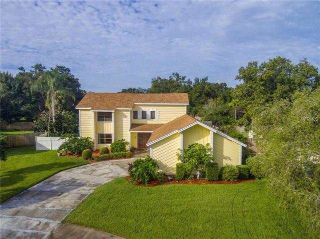 4305 Gainesborough Court, Tampa, FL 33624 (MLS #T3130642) :: The Duncan Duo Team