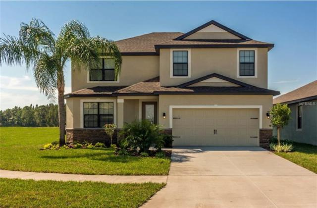 12536 Ballentrae Forest Drive, Riverview, FL 33579 (MLS #T3130715) :: The Duncan Duo Team