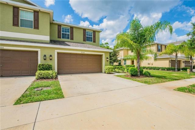 20308 Starfinder Way, Tampa, FL 33647 (MLS #T3130783) :: The Duncan Duo Team
