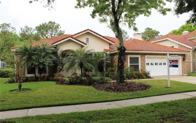 17947 Holly Brook Drive, Tampa, FL 33647 (MLS #T3130945) :: Cartwright Realty