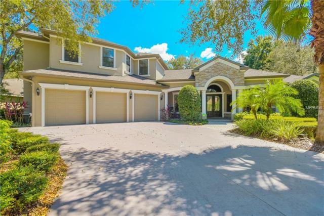 17836 Mission Oak Drive, Lithia, FL 33547 (MLS #T3130958) :: Jeff Borham & Associates at Keller Williams Realty