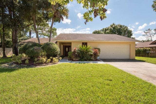 13917 Middle Park Drive, Tampa, FL 33624 (MLS #T3130963) :: The Duncan Duo Team
