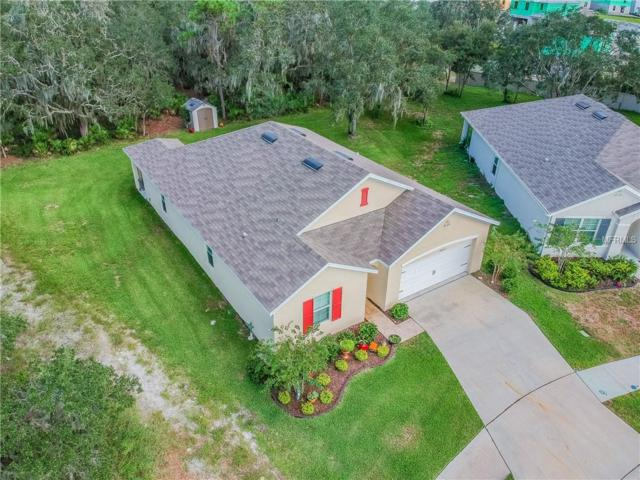 16443 Treasure Point Drive, Wimauma, FL 33598 (MLS #T3130994) :: Team Virgadamo