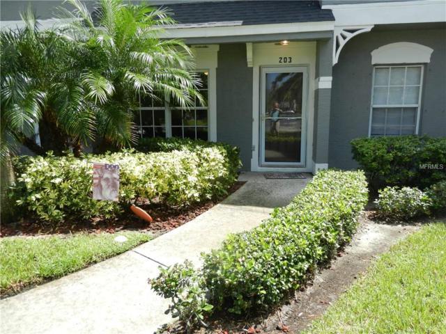 203 Countryside Key Boulevard, Oldsmar, FL 34677 (MLS #T3131129) :: O'Connor Homes